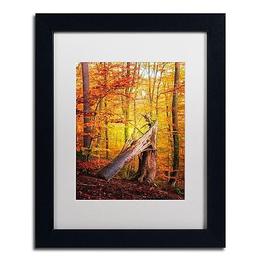 "Trademark Fine Art ''Broken Career'' by Philippe Sainte-Laudy 11"" x 14"" White Matted Black Frame (PSL0423-B1114MF)"