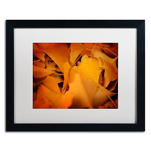 """Trademark Fine Art ''Divine Pearls'' by Philippe Sainte-Laudy 16"""" x 20"""" White Matted Black Frame (PSL0426-B1620MF)"""