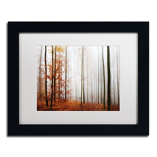 "Trademark Fine Art ''Forest Corner'' by Philippe Sainte-Laudy 11"" x 14"" White Matted Black Frame (PSL0429-B1114MF)"