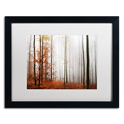 Trademark Fine Art ''Forest Corner'' by Philippe Sainte-Laudy 16