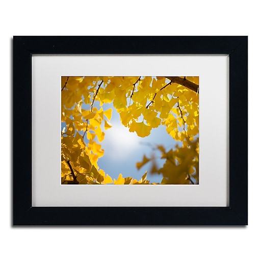"Trademark Fine Art ''Ginkgo Leaves in Autumn'' by Philippe Sainte-Laudy 11"" x 14"" White Matted Black Frame (PSL0432-B1114MF)"
