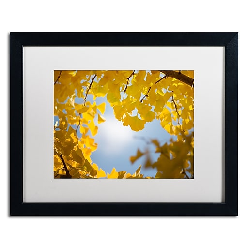 """Trademark Fine Art ''Ginkgo Leaves in Autumn'' by Philippe Sainte-Laudy 16"""" x 20"""" White Matted Black Frame (PSL0432-B1620MF)"""
