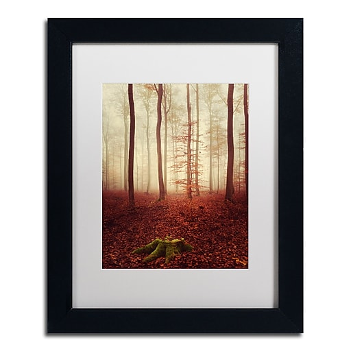 """Trademark Fine Art ''Land of the Free'' by Philippe Sainte-Laudy 11"""" x 14"""" White Matted Black Frame (PSL0436-B1114MF)"""