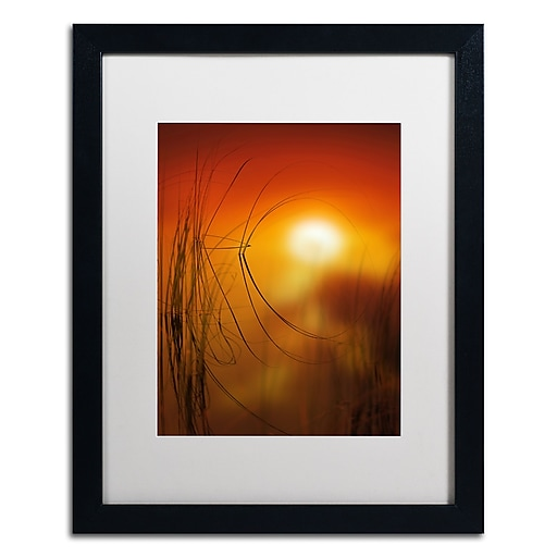 "Trademark Fine Art ''Nature Time Machine'' by Philippe Sainte-Laudy 16"" x 20"" White Matted Black Frame (PSL0440-B1620MF)"