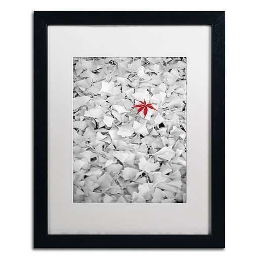"Trademark Fine Art ''Rebel Leaf'' by Philippe Sainte-Laudy 16"" x 20"" White Matted Black Frame (PSL0443-B1620MF)"