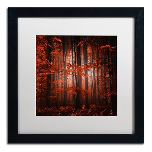 "Trademark Fine Art ''Red Parallel Universe'' by Philippe Sainte-Laudy 16"" x 16"" White Matted Black Frame (PSL0444-B1616MF)"