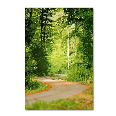 Trademark Fine Art ''S Road'' by Philippe Sainte-Laudy 16