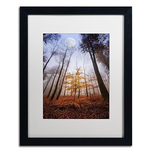 "Trademark Fine Art ''Sentinel'' by Philippe Sainte-Laudy 16"" x 20"" White Matted Black Frame (PSL0449-B1620MF)"