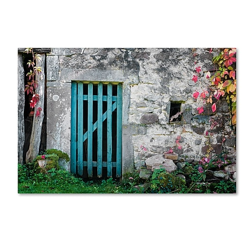 "Trademark Fine Art ''The Old Wooden Door'' by Philippe Sainte-Laudy 16"" x 24"" Canvas Art (PSL0455-C1624GG)"