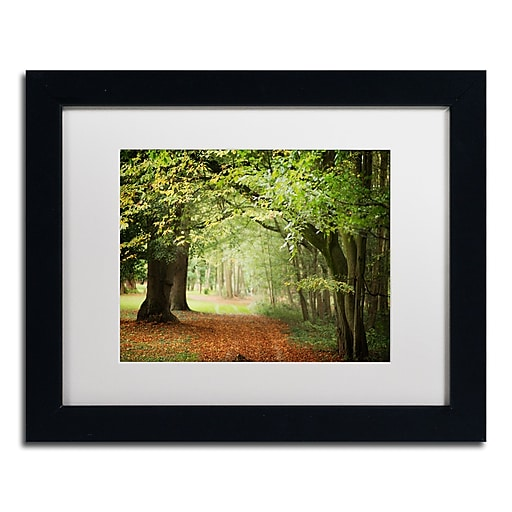 """Trademark Fine Art ''Through the Woods'' by Philippe Sainte-Laudy 11"""" x 14"""" White Matted Black Frame (PSL0456-B1114MF)"""
