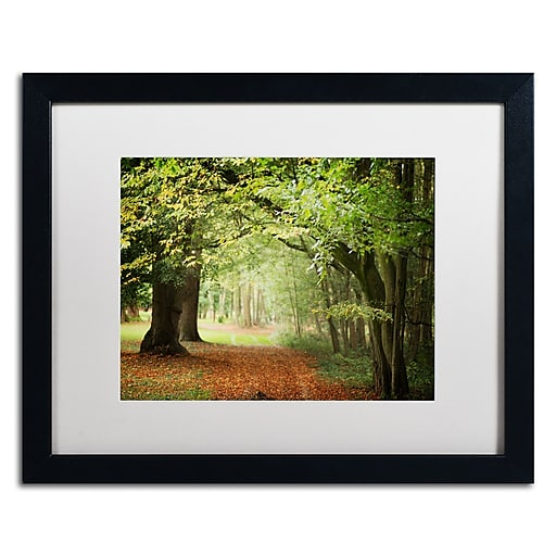 """Trademark Fine Art ''Through the Woods'' by Philippe Sainte-Laudy 16"""" x 20"""" White Matted Black Frame (PSL0456-B1620MF)"""