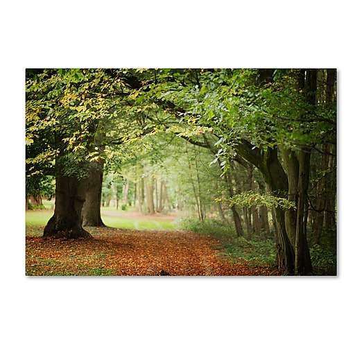 "Trademark Fine Art ''Through the Woods'' by Philippe Sainte-Laudy 16"" x 24"" Canvas Art (PSL0456-C1624GG)"