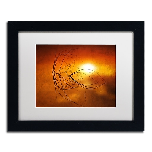 "Trademark Fine Art ''Touch of Last Light'' by Philippe Sainte-Laudy 11"" x 14"" White Matted Black Frame (PSL0457-B1114MF)"