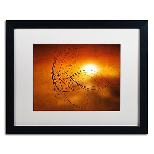 """Trademark Fine Art ''Touch of Last Light'' by Philippe Sainte-Laudy 16"""" x 20"""" White Matted Black Frame (PSL0457-B1620MF)"""