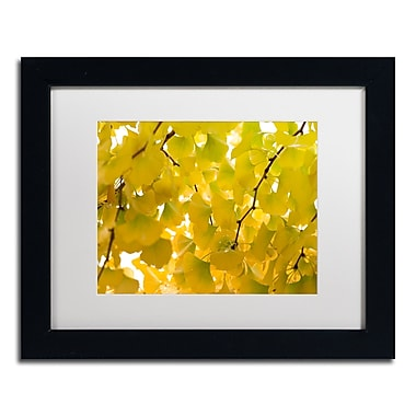 Trademark Fine Art ''Yellow Autumn'' by Philippe Sainte-Laudy 11