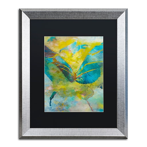 """Trademark Fine Art ''Butterflight'' by Rickey Lewis 16"""" x 20"""" Black Matted Silver Frame (RL003-S1620BMF)"""