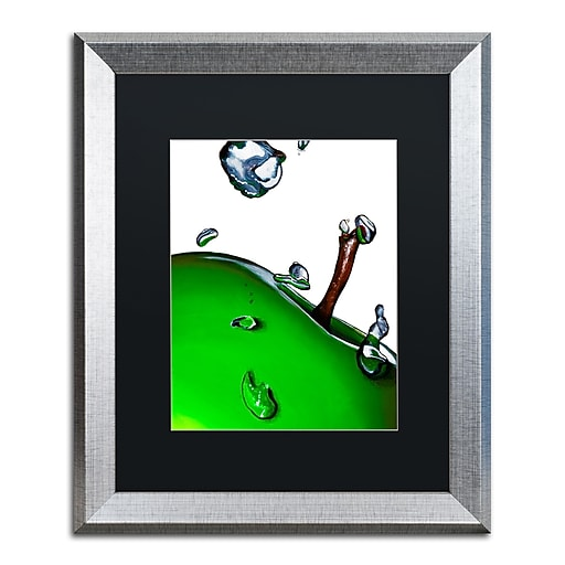 "Trademark Fine Art ''Granny Splash II'' by Roderick Stevens 16"" x 20"" Black Matted Silver Frame (RS020-S1620BMF)"