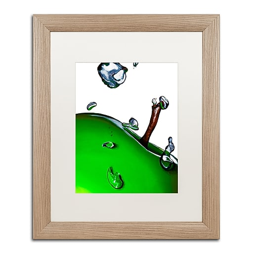 """Trademark Fine Art ''Granny Splash II'' by Roderick Stevens 16"""" x 20"""" White Matted Wood Frame (RS020-T1620MF)"""