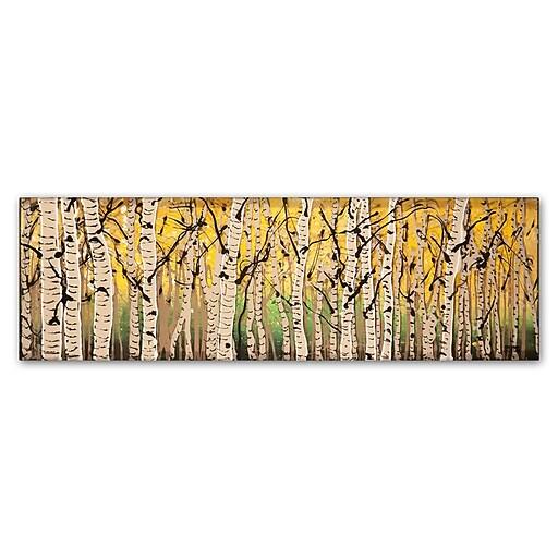 """Trademark Fine Art ''PanorAspens Fall Begins'' by Roderick Stevens 6"""" x 19"""" Canvas Art (RS1018-C619GG)"""