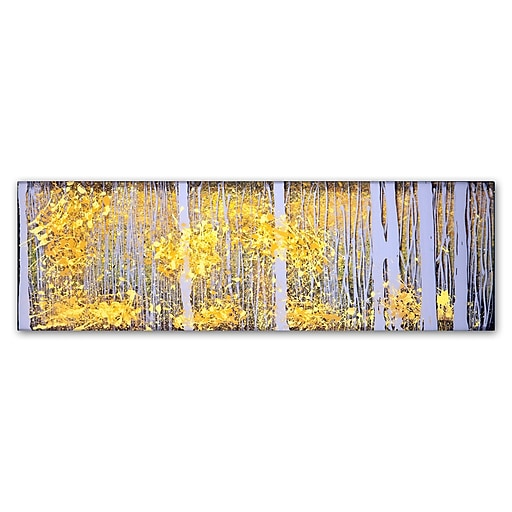 "Trademark Fine Art ''PanorAspens Grey Forest'' by Roderick Stevens 10"" x 32"" Canvas Art (RS1019-C1032GG)"