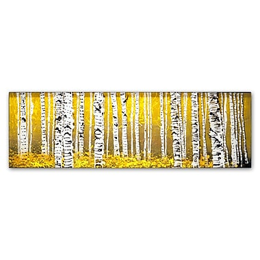 Trademark Fine Art ''PanorAspens Yellow Floor'' by Roderick Stevens 10