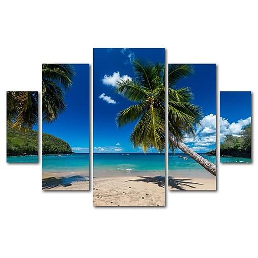Trademark Fine Art ''Martinique'' by Mathieu Rivrin 3.3' x 4.8' Multi Panel Art Set (RV0020-P5-SET)