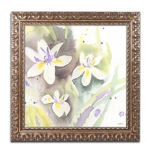 "Trademark Fine Art ''White Iris'' by Sheila Golden 16"" x 16"" Ornate Frame (SG5734-G1616F)"
