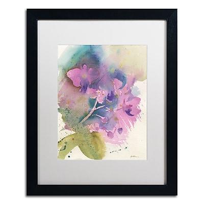 Trademark Fine Art ''Orchid Dream'' by Sheila Golden 16