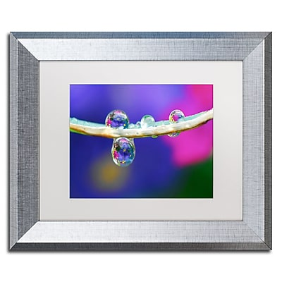 """Trademark Fine Art ''Double Drops'' by Steve Wall 11"""" x 14"""" White Matted Silver Frame (SW0007-S1114MF)"""
