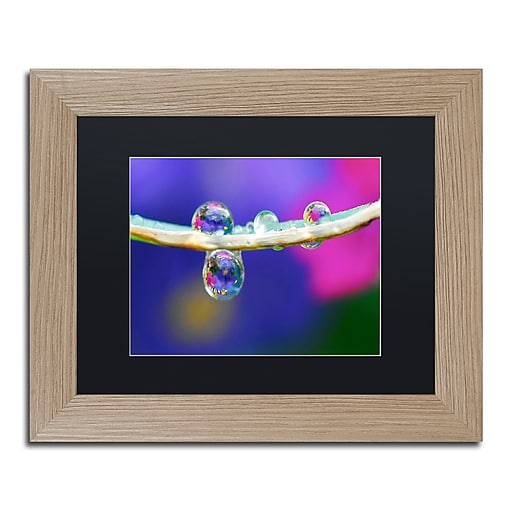 "Trademark Fine Art ''Double Drops'' by Steve Wall 11"" x 14"" Black Matted Wood Frame (SW0007-T1114BMF)"
