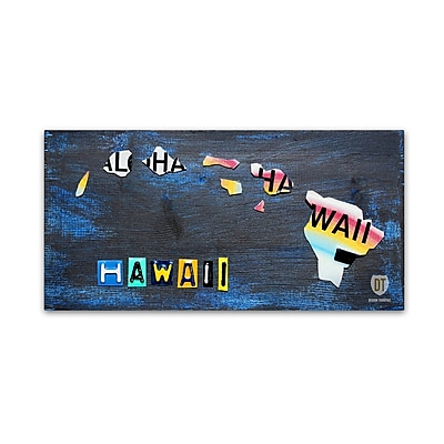 Trademark Fine Art ''Hawaii State Map'' by Design Turnpike 24