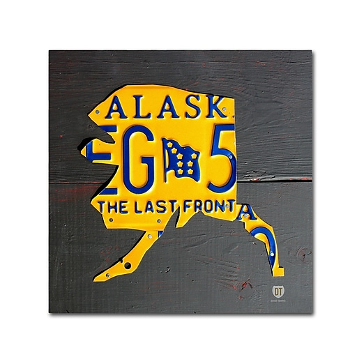 "Trademark Fine Art ''Alaska'' by Design Turnpike 35"" x 35"" Canvas Art (ALI1275-C3535GG)"