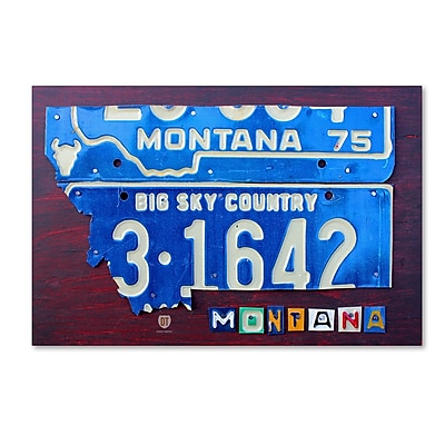 Trademark Fine Art ''Montana'' by Design Turnpike 22