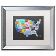 "Trademark Fine Art ''Massive USA License Plate Map'' by Design Turnpike 16"" x 20"" White Matted Silver Frame (ALI1306-S1620MF)"