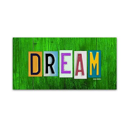 "Trademark Fine Art ''Dream'' by Design Turnpike 24"" x 47"" Canvas Art (ALI1307-C2447GG)"