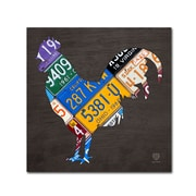 "Trademark Fine Art ''Rooster'' by Design Turnpike 24"" x 24"" Canvas Art (ALI1318-C2424GG)"