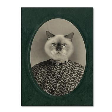 Trademark Fine Art ''Cat Series #1'' by J Hovenstine Studios 24