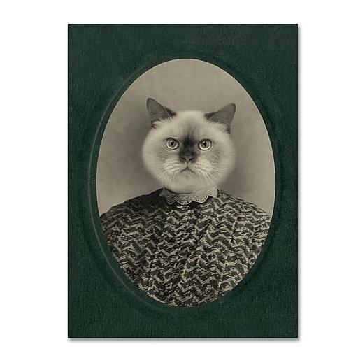 "Trademark Fine Art ''Cat Series #1'' by J Hovenstine Studios 14"" x 19"" Canvas Art (ALI1330-C1419GG)"