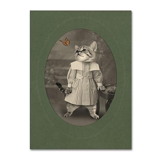 "Trademark Fine Art ''Cat Series #2'' by J Hovenstine Studios 18"" x 24"" Canvas Art (ALI1331-C1824GG)"