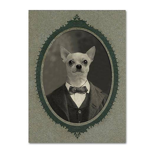 "Trademark Fine Art ''Dog Series #1'' by J Hovenstine Studios 35"" x 47"" Canvas Art (ALI1332-C3547GG)"