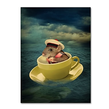 Trademark Fine Art ''Mice Series #4.5'' by J Hovenstine Studios 18