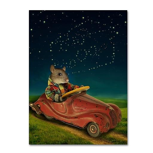 "Trademark Fine Art ''Mice Series #5.5'' by J Hovenstine Studios 18"" x 24"" Canvas Art (ALI1347-C1824GG)"
