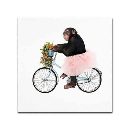 "Trademark Fine Art ''Monkeys Riding Bikes #1'' by J Hovenstine Studios 14"" x 14"" Canvas Art (ALI1348-C1414GG)"