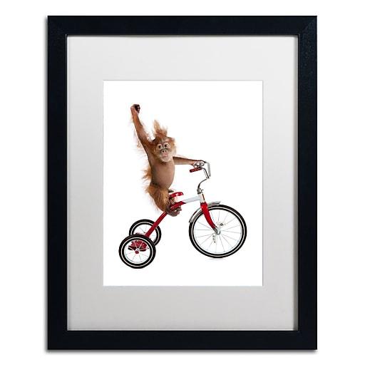 "Trademark Fine Art ''Monkeys Riding Bikes #2'' by J Hovenstine Studios 16"" x 20"" White Matted Black Frame (ALI1349-B1620MF)"