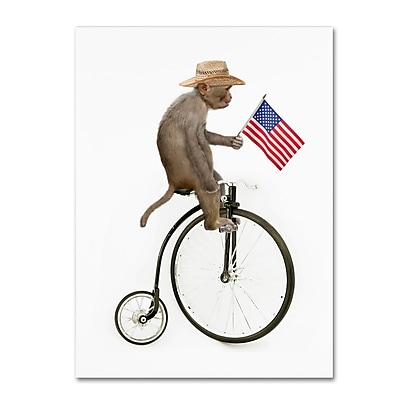 Trademark Fine Art ''Monkeys Riding Bikes #3'' by J Hovenstine Studios 24