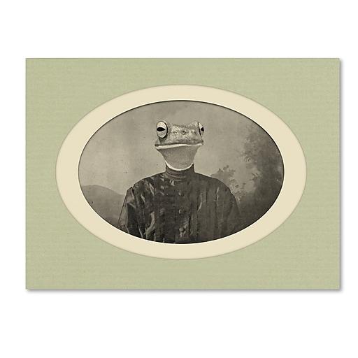 """Trademark Fine Art ''Reptiles #1'' by J Hovenstine Studios 35"""" x 47"""" Canvas Art (ALI1354-C3547GG)"""