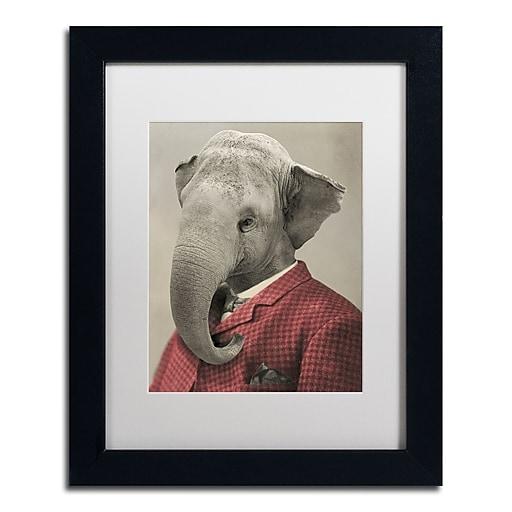 "Trademark Fine Art ''Wild Animals #1'' by J Hovenstine Studios 11"" x 14"" White Matted Black Frame (ALI1355-B1114MF)"