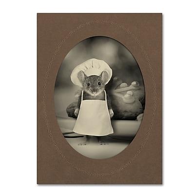 Trademark Fine Art ''Mice Series #6'' by J Hovenstine Studios 35