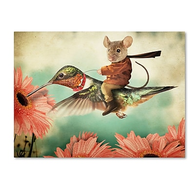 Trademark Fine Art ''Catching A Ride On A Hummingbird'' by J Hovenstine Studios 18