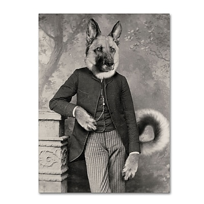 Trademark Fine Art ''Hans The German Shepherd'' by J Hovenstine Studios 14